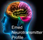 3843-Neurotransmitter-1-21