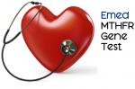 3481-Emed-MTHFR-Gene-test-10