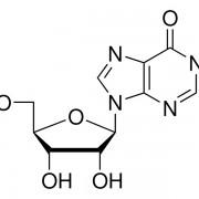 2362-inosine-13